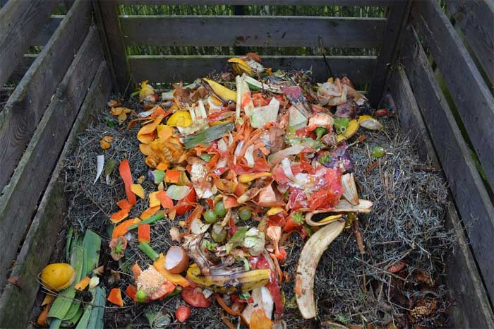 Where to put the compost bin in the garden