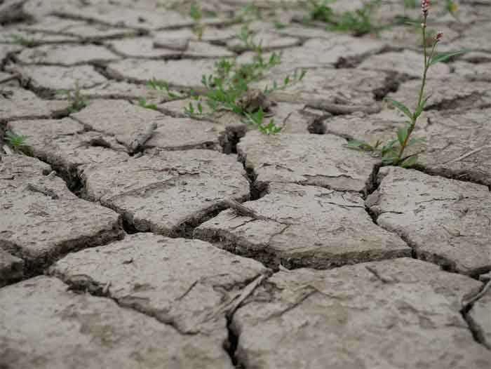 How To Turn Clay Soil Into Good Soil