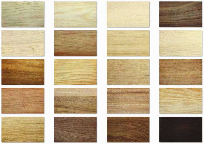 Types of wood: their characteristics and uses